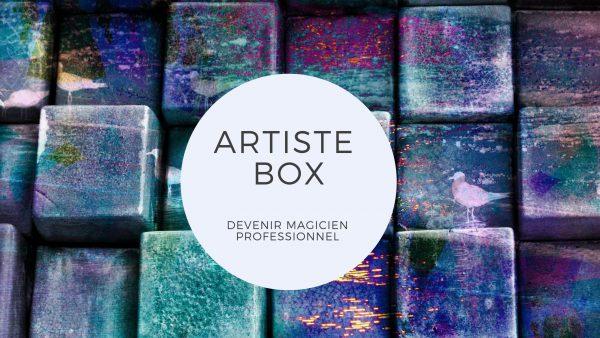 formation artiste box